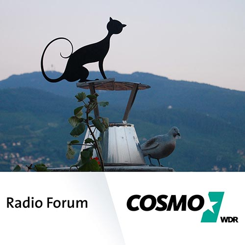 COSMO Radio Forum