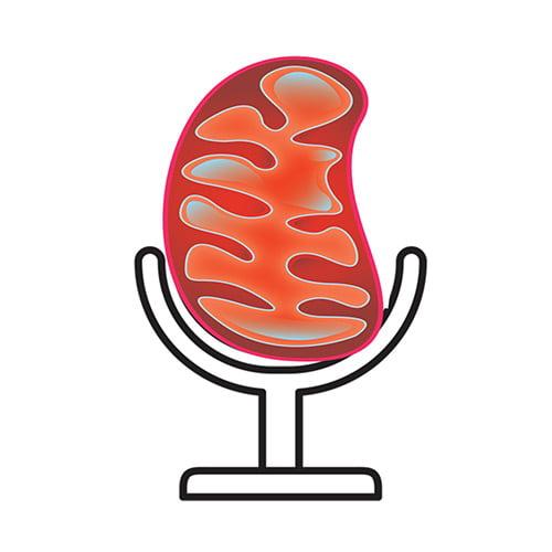 Bioblast je podcast
